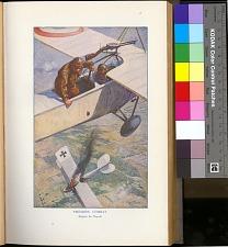 plate between p. 50-51,