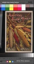 America's Gold Mine