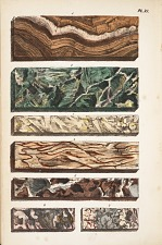 Plate depicting seven types of marble from the United States.