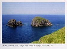 Windswept Pulau Tokong Burong, Seribuat Archipelago, Peninsular Malaysia.