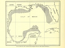 Areas fished by the commercial snapper fleet in the Gulf of Mexico.
