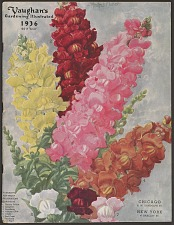 Vaughan's Gardening Illustrated 1936.