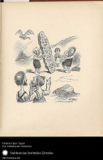 Illustration Number Twenty-Eight --