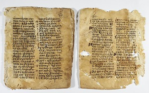 Biblical Manuscripts