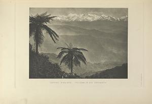 Eastern Himalayas; The home of six pheasants.