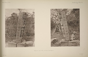 Stela 6. Side views, see Plate 107 and Page 67