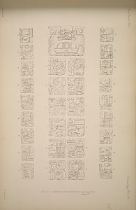 Stela 6. Drawing of the inscription ...