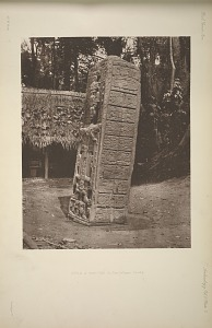 Stela A. East side. See plate 7 & Pages 7 and 8.