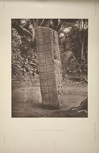 Stela A. West side. See Plate 7 & Pages 7 and 8.