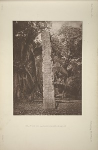 Stela F. West side, See Plates 36, 39a, and 40 and Pages 12-13.