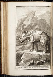 Rhinoceros zoo als die meest afgebeeldt worden [The rhinoceros as it had been commonly depicted]