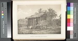 Native hut, near Turbo gulf of Darien