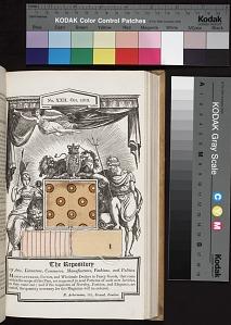 Opp. p. 250