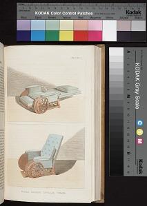 Opp. p. 306, Plate 31