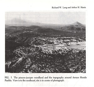 FIG. 5. The pinyon-juniper woodland and the topography around Arroyo Hondo Pueblo. View is to the southeast; site is in center of photograph.