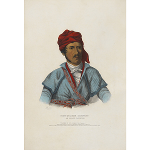 Timpoochee Barnard - An Uchee Warrior