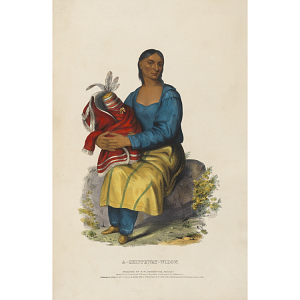 A Chippeway Widow