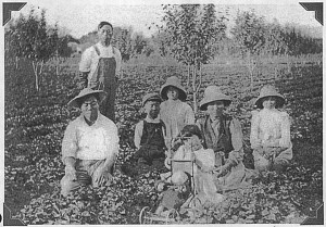 Izumizaki family in strawberry field with orchard
