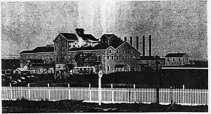 Western Beet Sugar Company factory, Watsonville, 1890s