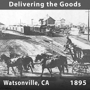 Delivering the Goods - Watsonville, California, 1895