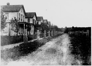 Houses on Valley Street, Anacostia, about 1885.