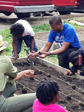 Food Warriors planting a garden in Detroit, 2016