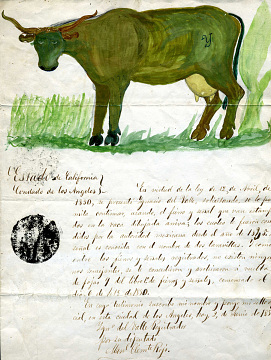 Reproduction of permit for reissue of cattle brand to Ygnacio Del Valle, 1851