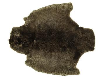Beaver pelt, mid-1800s