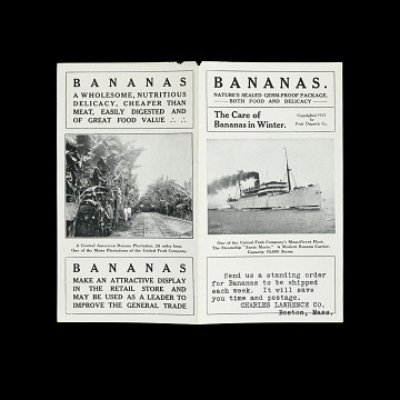 Banana distributor advertisement, 1911