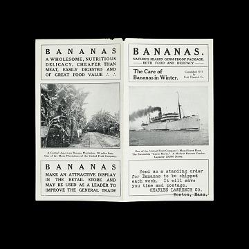 Banana distributor advertisement, 1911