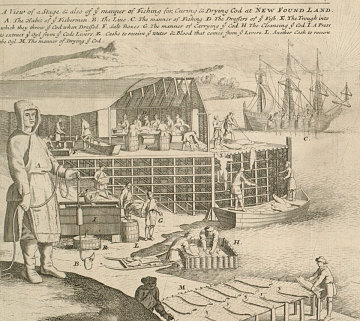Codfish Processing, 1715