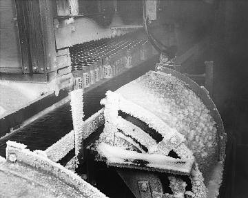 Freezing the juice, about 1955