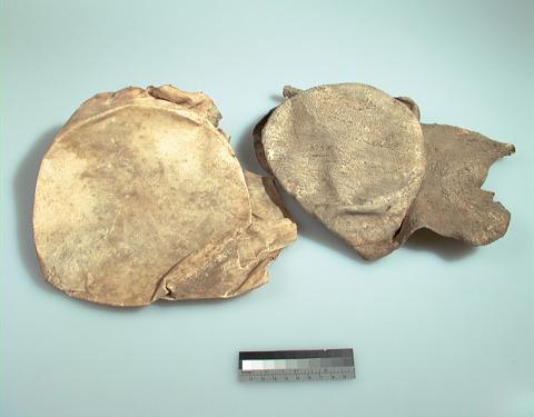 Image 1 for Drum part/fragment