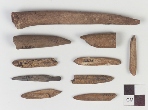 Image 1 for Worked animal bone