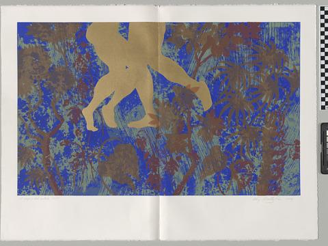 Image for Il Songo del Cortile