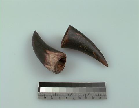 Image 1 for Charm/Amulet
