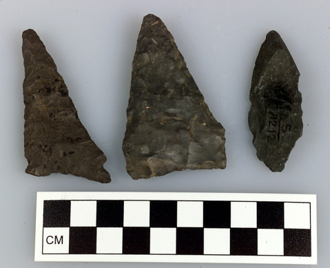 Image 1 for Bifacial tool/projectile point