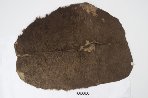 Image 1 for Saddle pad