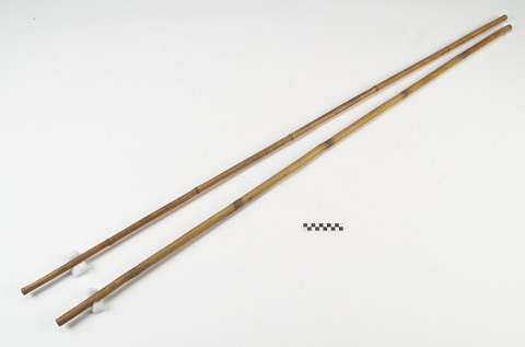 Image 1 for Blowgun and dart