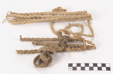 Image 1 for Whip/Lash