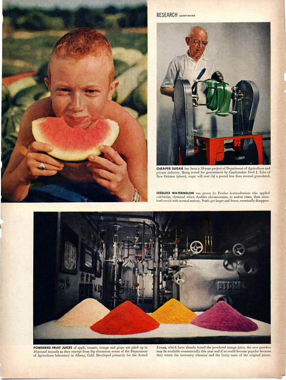 LIFE magazine, 1955