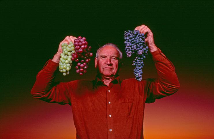 Harold P. Olmo, 1985