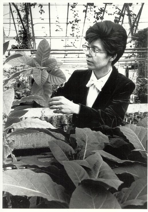 Mary-Dell Chilton in her Washington University lab, about 1983