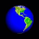 Earth's Vegetation