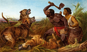 Image for The Hunted Slaves