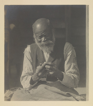 Image for The Sharecropper