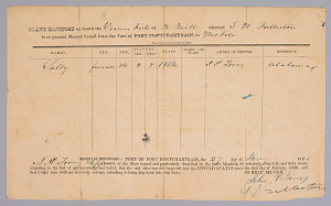Image for Manifest for the ship Fashion listing an enslaved girl, Sally, age 14
