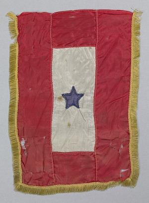 Image for Blue Star flag