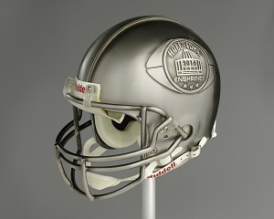 Image for NFL Hall of Fame helmet for Tony Dungy