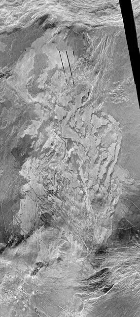 Lava Flow Fields on Venus